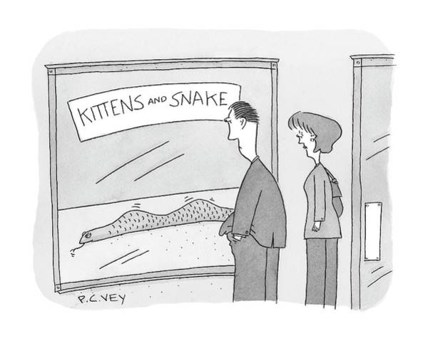 Kitten Drawing - New Yorker December 17th, 2007 by Peter C. Vey
