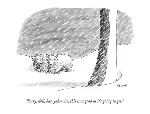 Weather Drawing - Sorry, Doll, But, Yak-wise, This Is As Good by Jack Ziegler
