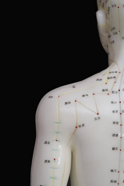 Tcm Wall Art - Photograph - Acupuncture Points by Science Stock Photography
