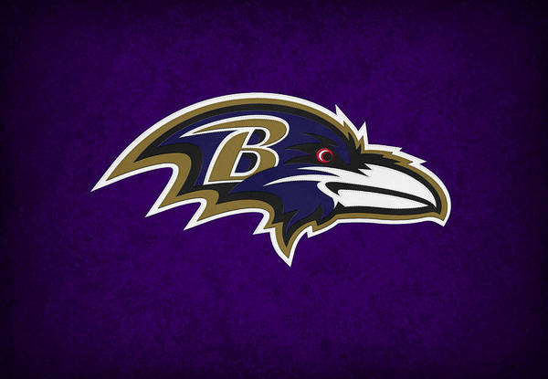 Baltimore Photograph - Baltimore Ravens by Joe Hamilton