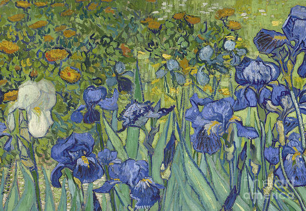 Close-up Painting - Irises by Vincent Van Gogh