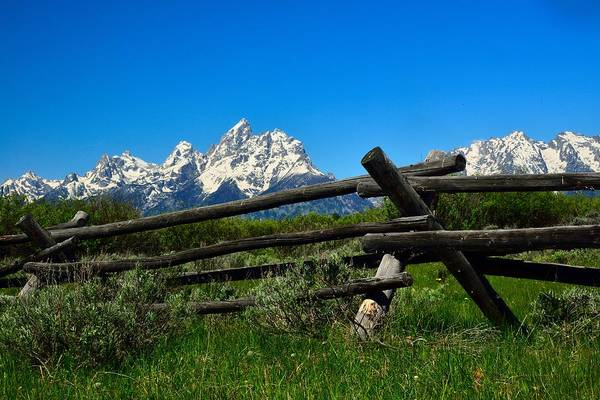 Photograph - Teton Mountains by Walt Sterneman