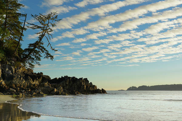 Tofino Wall Art - Photograph - Canada, British Columbia, Vancouver by Kevin Oke