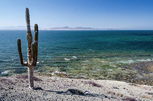 Sea Of Cortez Photograph - Isla De Espiritu Santo, Baja, Mexico by Mark Williford