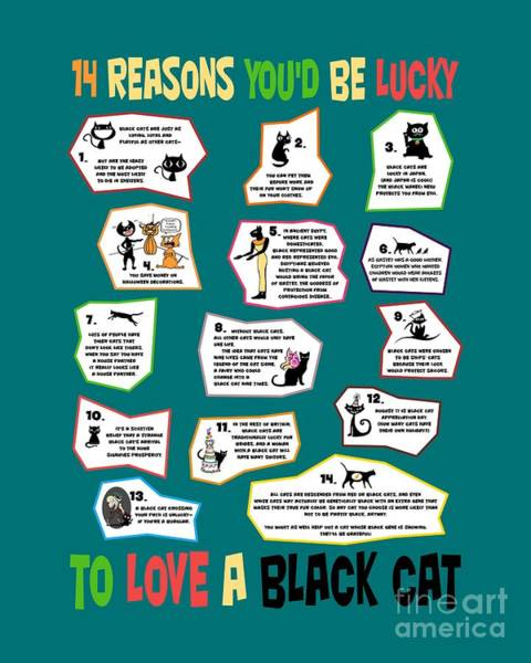 Digital Art - 14 Reasons You'd Be Lucky To Love A Black Cat by Pet Serrano