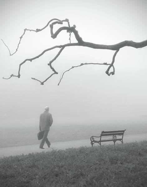 Park Bench Photograph - Untitled by Anna Niemiec