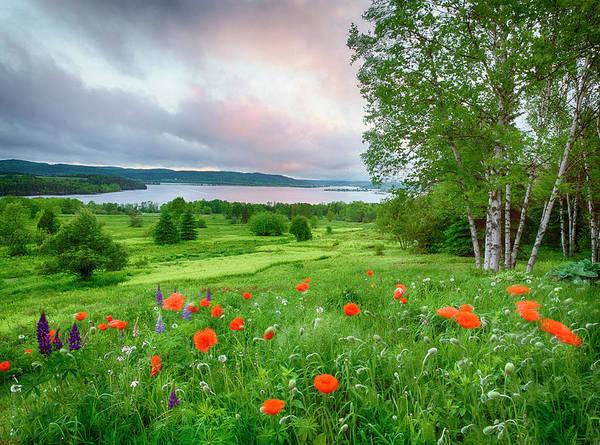 Birch River Photograph - Canada, New Brunswick by Jaynes Gallery