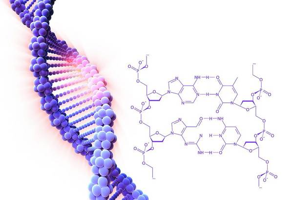 Wall Art - Photograph - Crispr-cas9 Gene Editing by Alfred Pasieka/science Photo Library