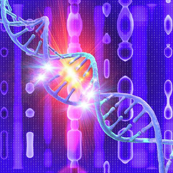 Wall Art - Photograph - Dna Damage by Mehau Kulyk/science Photo Library