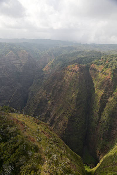 Photograph - Kauai Canyons by Steven Lapkin