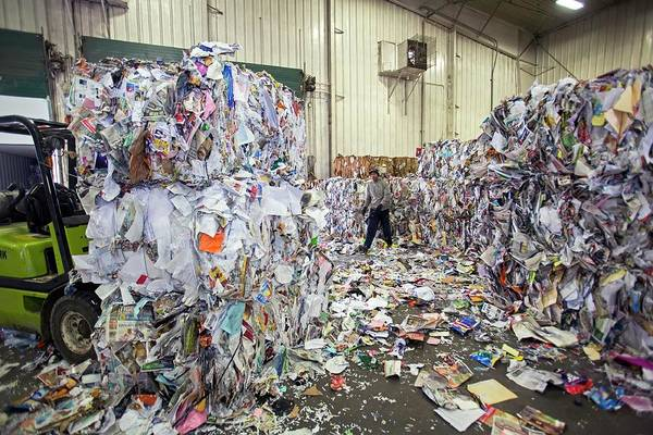 Southeastern Photograph - Recycling Plant by Jim West
