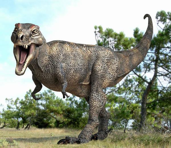 Scavengers Photograph - Tyrannosaurus Rex Dinosaur by Roger Harris