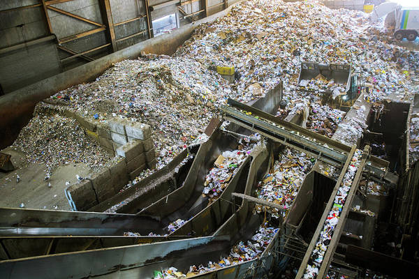 Bulldozer Photograph - Waste Sorting At A Recycling Centre by Peter Menzel