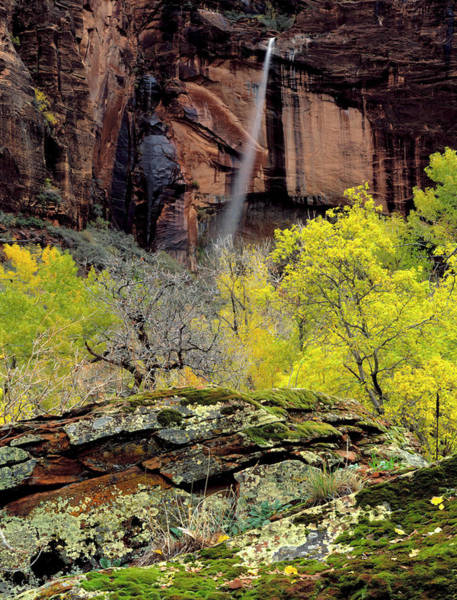 Geologic Formation Photograph - Zion National Park, Utah by Scott T. Smith