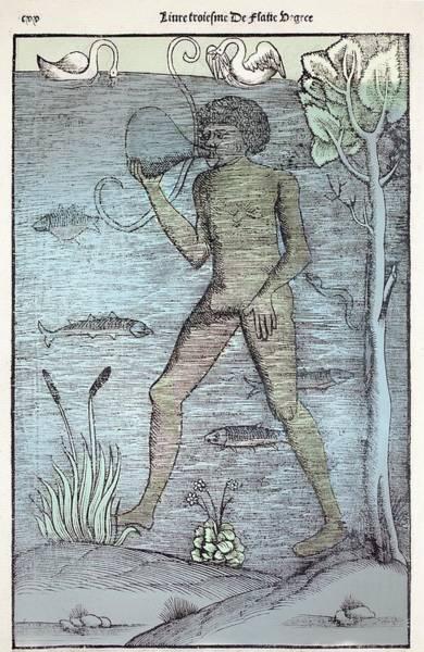 Woodcut Photograph - 1532 A Medieval Diver Bladder Aqualung by Paul D Stewart