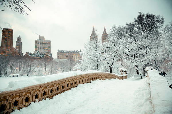 Photograph - Central Park Winter by Songquan Deng