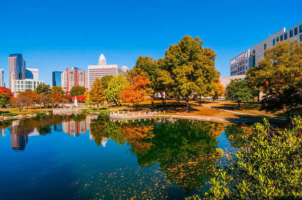 Photograph - Charlotte City Skyline Autumn Season by Alex Grichenko