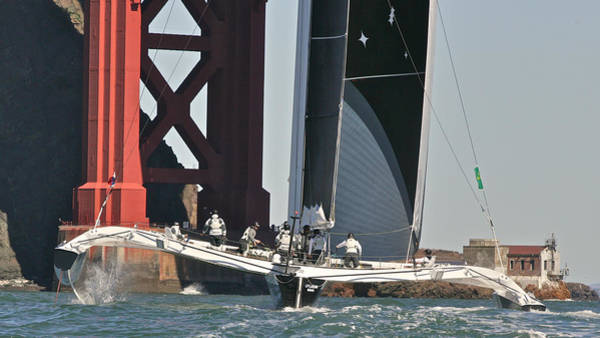 Photograph - San Francisco Bay Sailing by Steven Lapkin