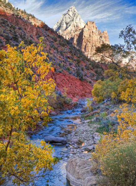 Wall Art - Photograph - Zion National Park Utah by Douglas Pulsipher
