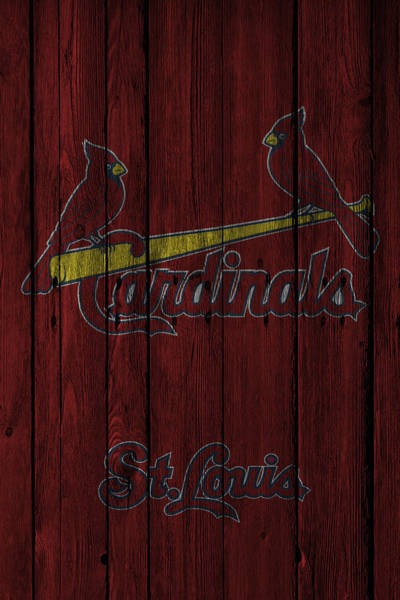 Gloves Photograph - St Louis Cardinals by Joe Hamilton