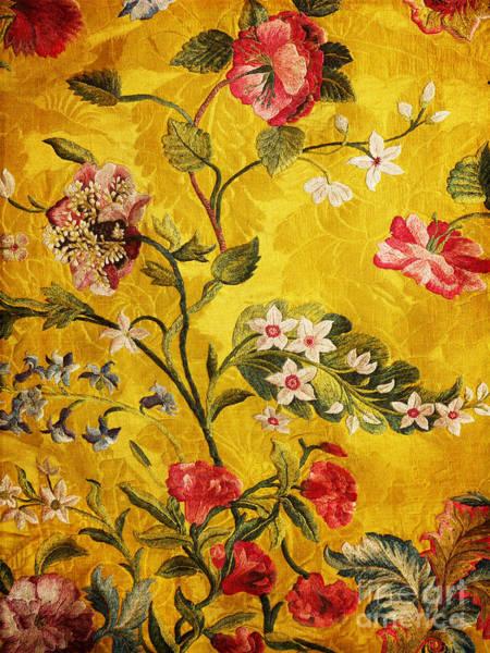 Photograph - 17th Century Embroidery On Silk Brocade by Brenda Kean