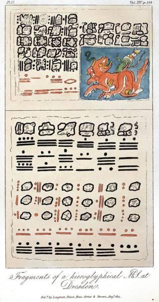 Wall Art - Photograph - 1814 Humboldt Mayan Heiroglyphics by Paul D Stewart