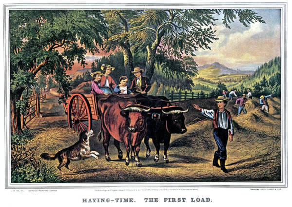 Currier And Ives Painting - 1860s Haying Time The First Load - by Vintage Images