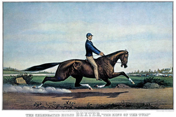 Currier And Ives Painting - 1860s The Celebrated Horse Dexter King by Vintage Images