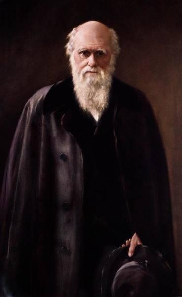 Wall Art - Photograph - 1881 Charles Darwin Portrait Aftr Collier by Paul D Stewart