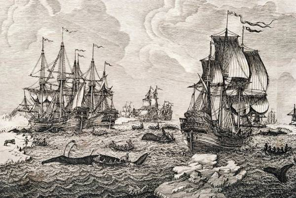 18th Century Dutch Whaling Fleet Art Print by George Bernard/science Photo Library