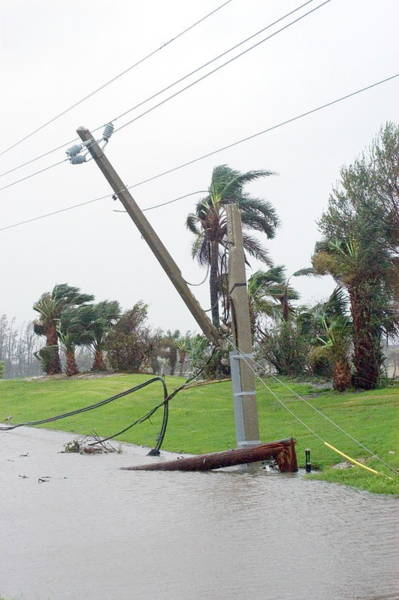 Utility Pole Photograph - Hurricane Damage by Jim Reed/science Photo Library
