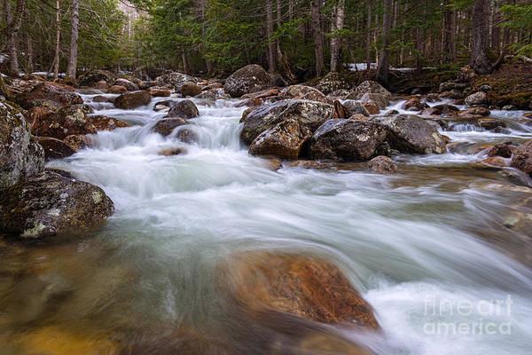 Photograph - 19 Mile Brook by Sharon Seaward