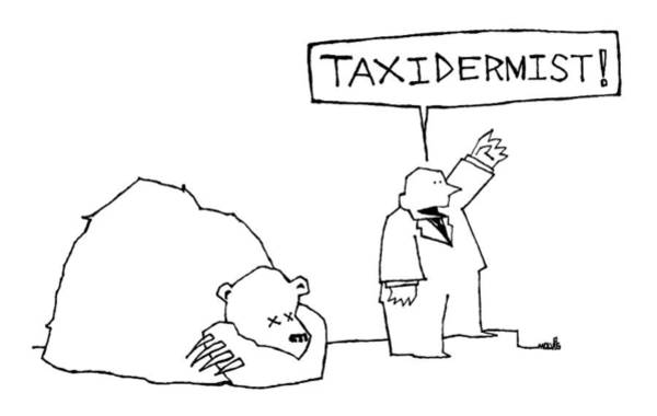 Taxi Drawing - New Yorker March 13th, 2006 by Ariel Molvig