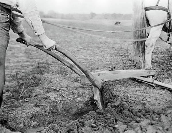 Plow Horses Photograph - 1920s 1930s 1940s Close-up Of Farmer by Vintage Images
