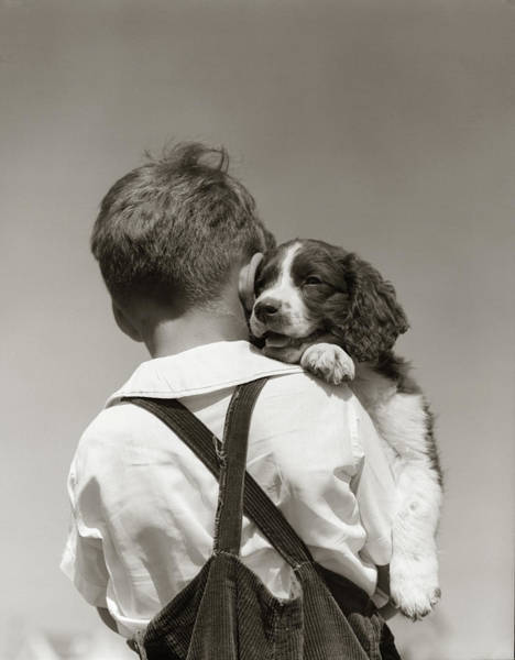 Spaniel Photograph - 1930s 1940s Back View Of Boy by Vintage Images