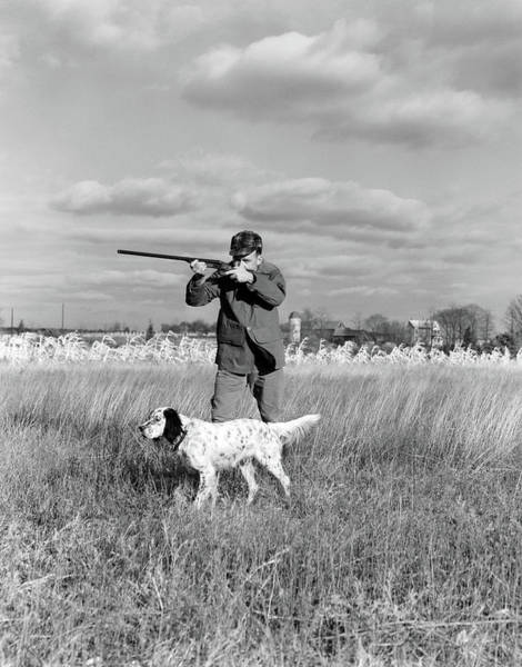 Setters Photograph - 1930s 1940s Man Bird Hunting In Field by Animal Images