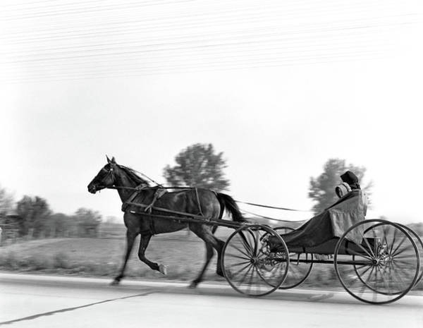 Lancaster County Photograph - 1930s Amish Woman And Child Riding by Animal Images