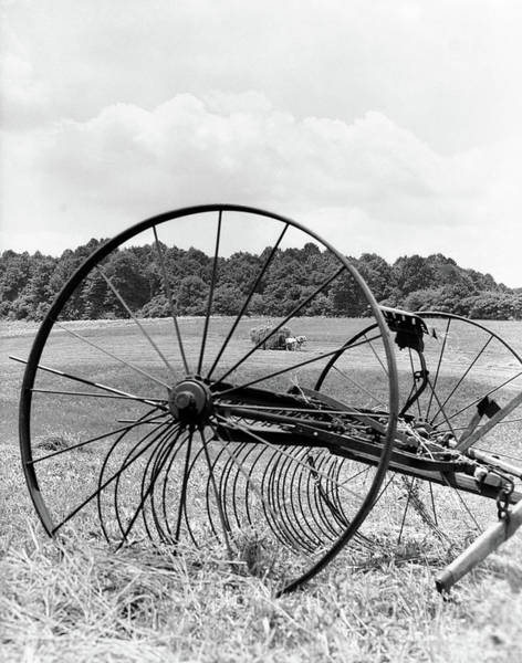 Hay Rake Photograph - 1930s Close-up Of Idle Hayer Team by Vintage Images