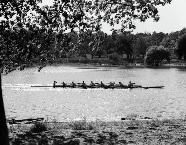 Oar Photograph - 1930s Silhouette Sculling Boat Race by Vintage Images