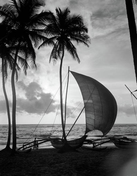 Wall Art - Photograph - 1930s Single Catamaran On Tropical by Vintage Images