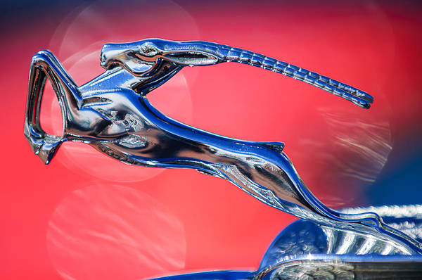 Photograph - 1932 Chrysler Ch Imperial Cabriolet Hood Ornament by Jill Reger