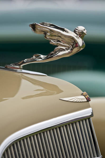 Vintage Hood Ornaments Photograph - 1935 Cadillac Convertible Hood Ornament by Jill Reger