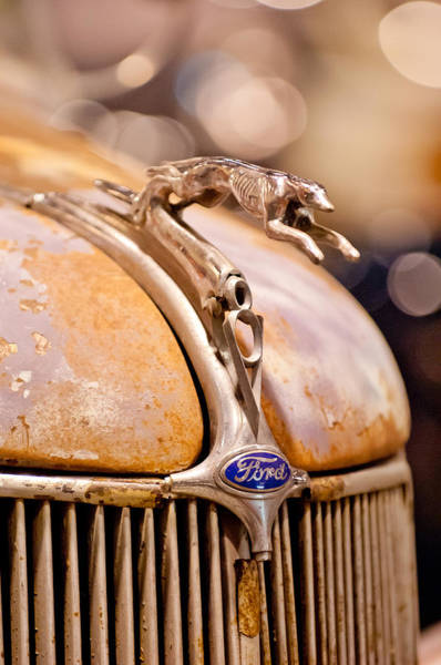 Cabriolet Photograph - 1936 Ford Cabriolet Hood Ornament by Jill Reger