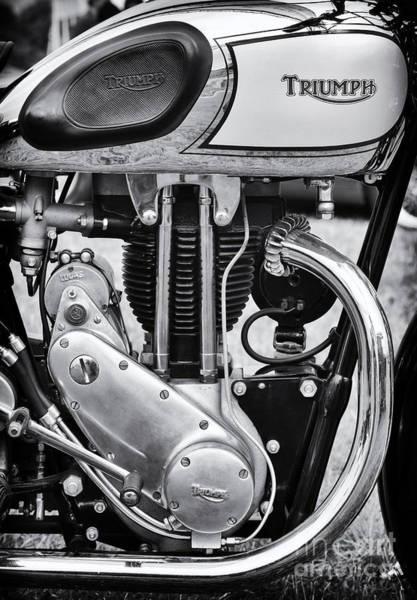 Photograph - 1936 Triumph Tiger 80 Monochrome by Tim Gainey