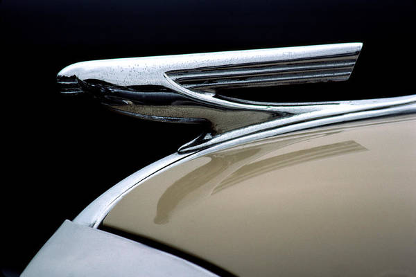 Hood Ornament Photograph - 1937 Chevrolet Hood Ornament by Carol Leigh