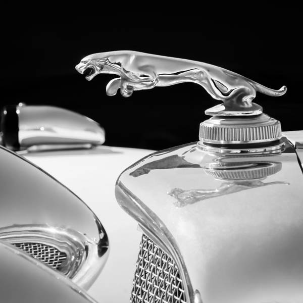 Wall Art - Photograph - 1937 Jaguar Prototype Hood Ornament -386bw55 by Jill Reger