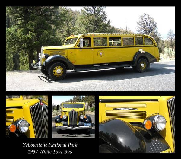 Photograph - 1937 White Tour Bus Yellowstone Natl Park by David Dunham