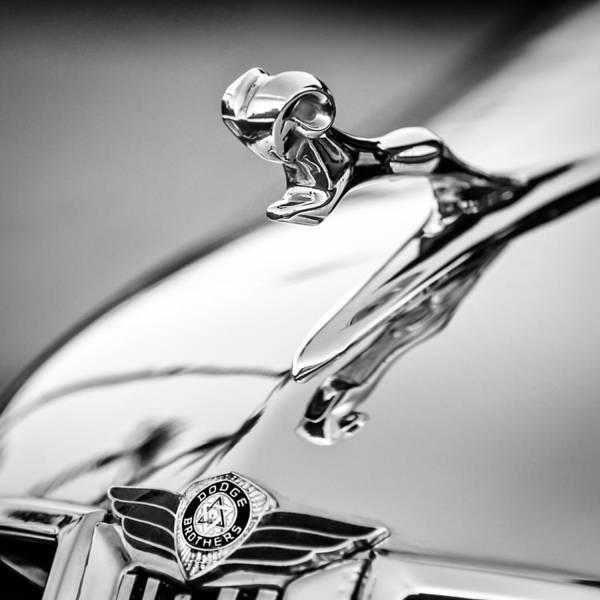 Photograph - 1938 Dodge Ram Hood Ornament -142bw55 by Jill Reger