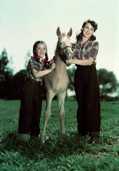 Girl And Horse Photograph - 1940s 1950s Smiling Girl And Teenage by Animal Images