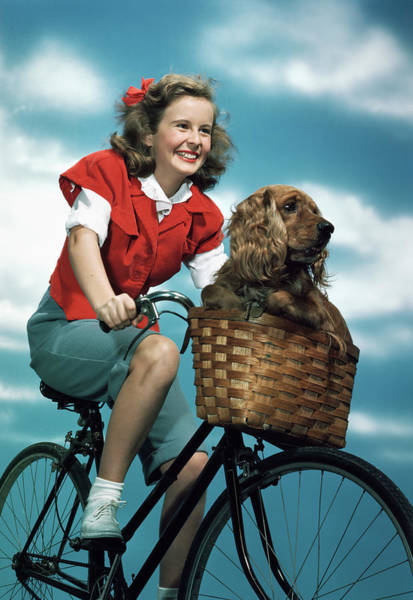 Cocker Spaniel Photograph - 1940s 1950s Smiling Teen Girl Riding by Animal Images